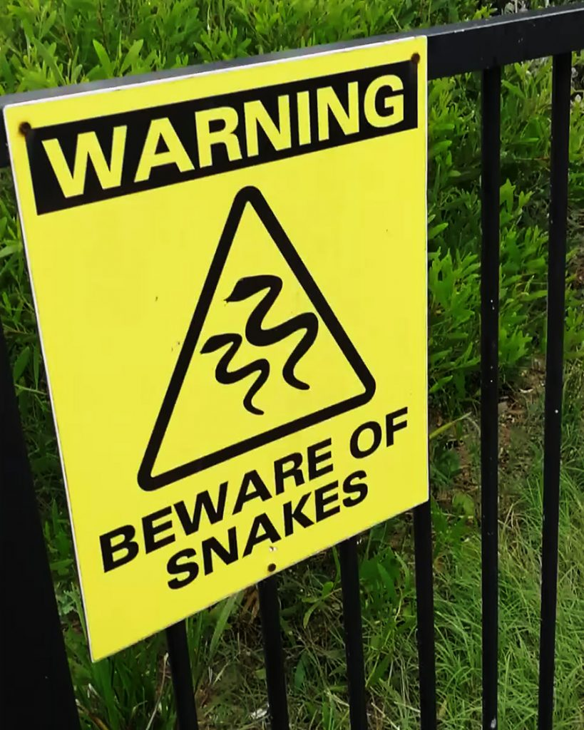 A sign at the beginning of Stockton Beach that says 'WARNING BEWARE OF SNAKES'.